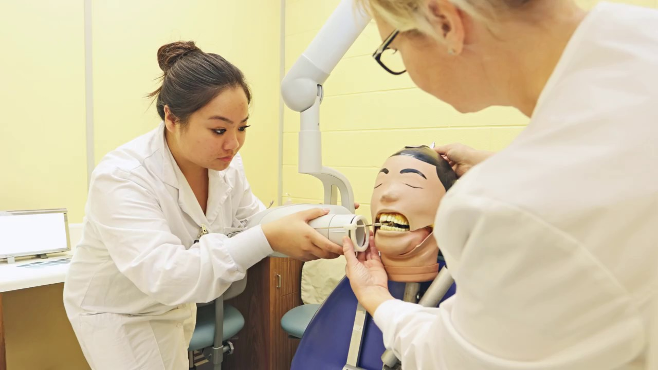 Leading Quotes On Durham Dental Practitioner