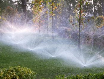 Have Asked Your Educators Concerning Lawn Sprinkler System